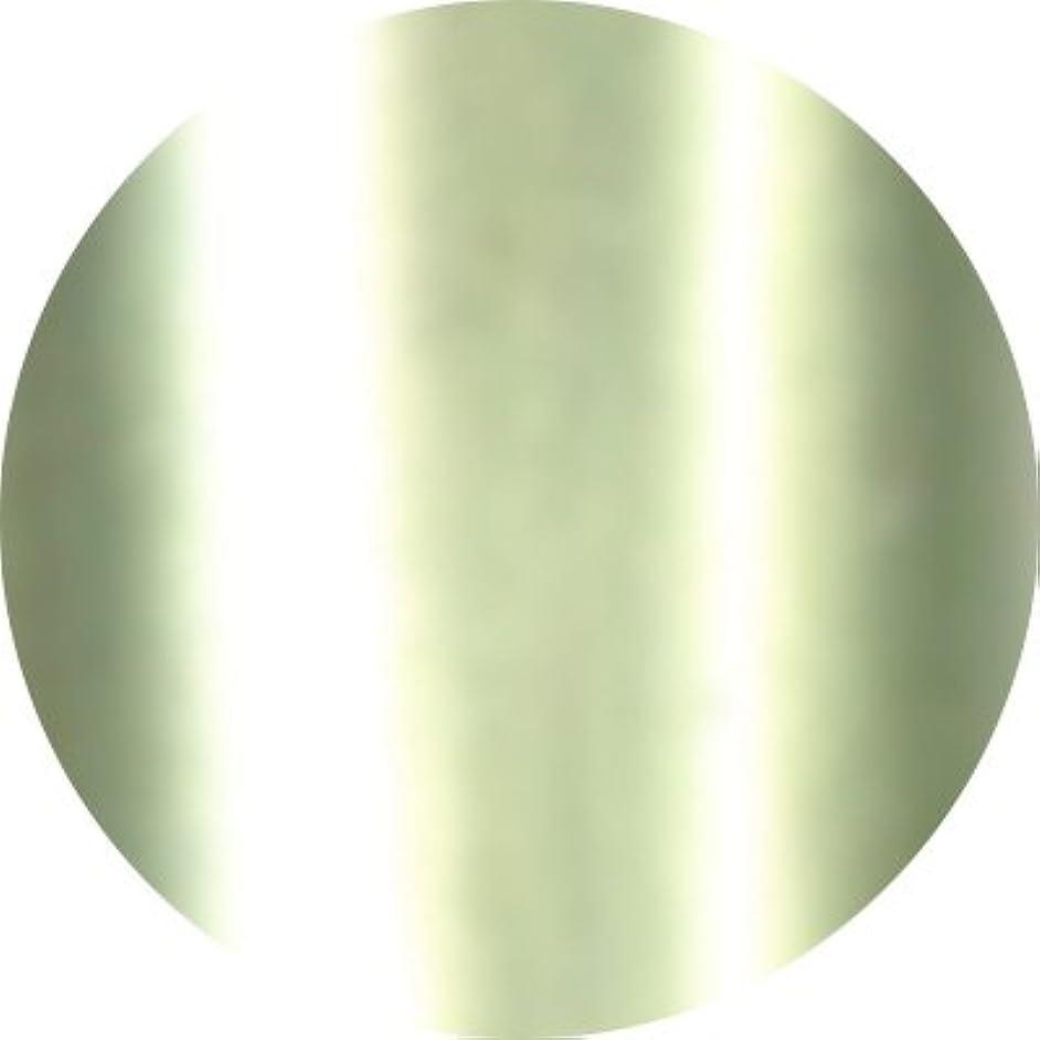 交通渋滞抑圧するとんでもないJewelry jel(ジュエリージェル) カラージェル 5ml<BR>メタリック MT011