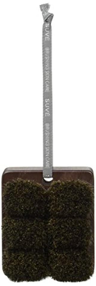 締め切りハチ符号熊野筆 「SUVE」 ボディブラシ セミハード ショート BBS2
