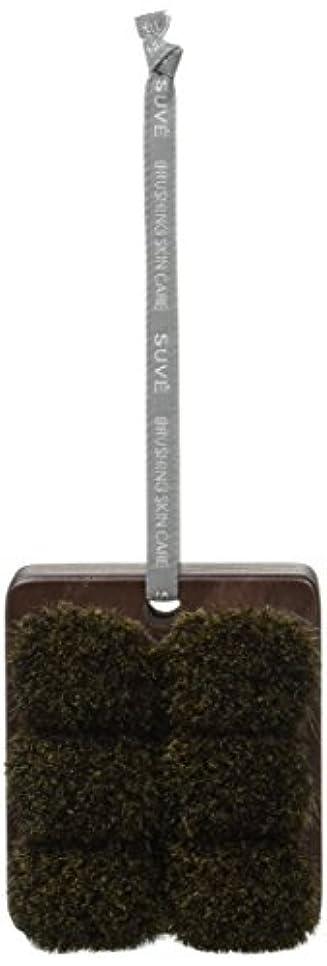 頼るある順応性のある熊野筆 「SUVE」 ボディブラシ セミハード ショート BBS2