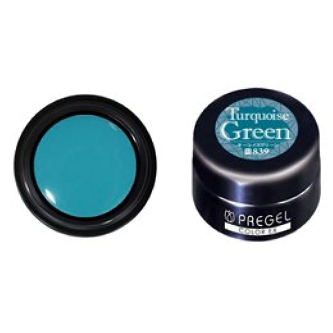 オンラインナップメダルPRE GEL プリジェル カラーEX ターコイズグリーン 3g PG-CE839