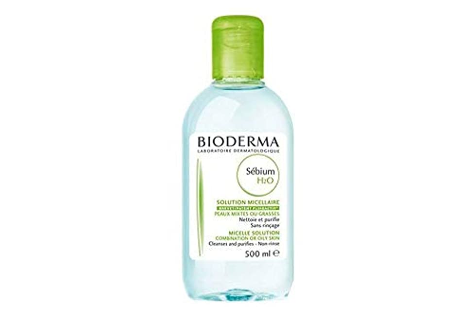 荒れ地予約ベッドビオデルマ セビウム H2O (エイチ ツーオー) D 500mL(BIODERMA)