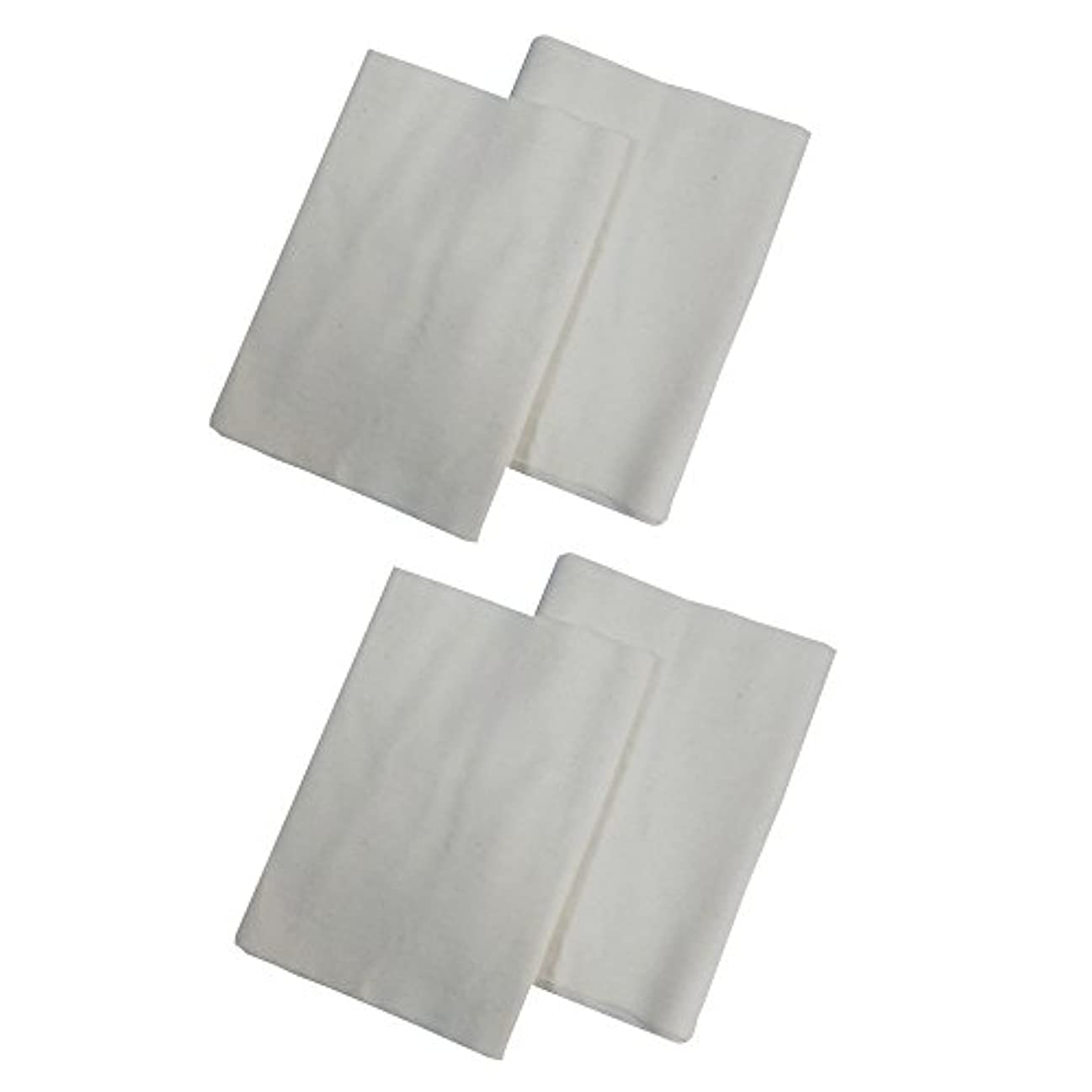 ほとんどないプレートごちそうコットンフランネル4枚組(ヒマシ油用) 無添加 無漂白 平織 両面起毛フランネル生成 (4)
