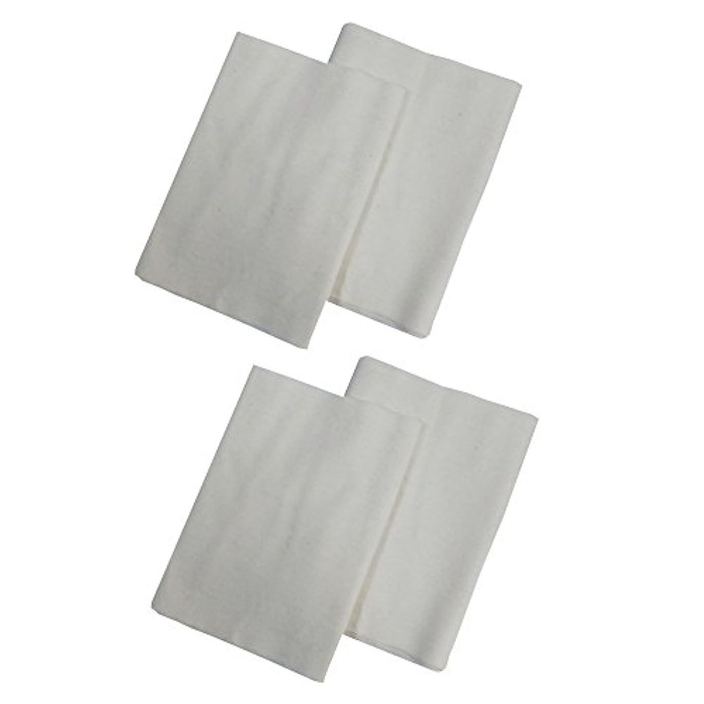 取るに足らない使い込むやりすぎコットンフランネル4枚組(ヒマシ油用) 無添加 無漂白 平織 両面起毛フランネル生成