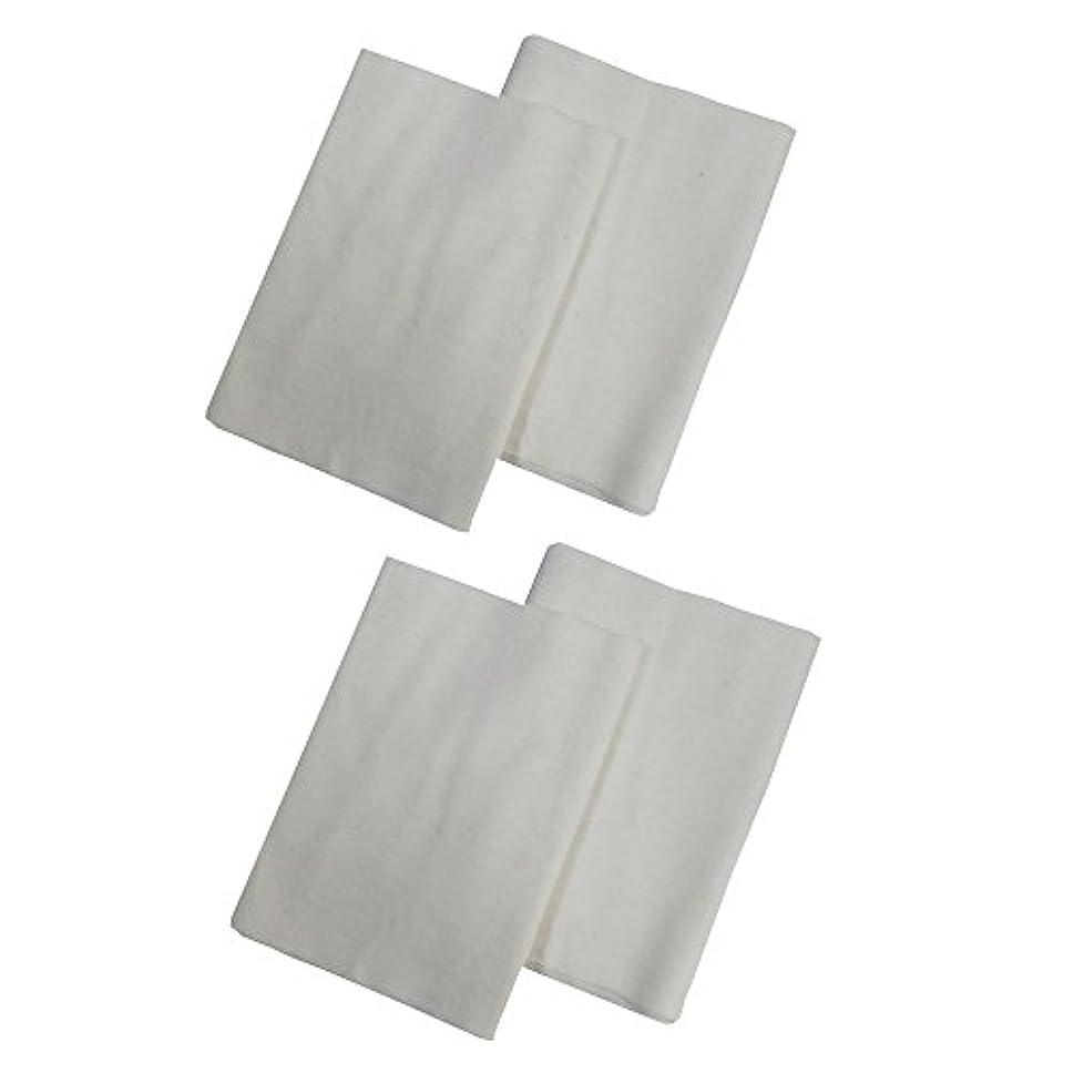 リスク空囲まれたコットンフランネル4枚組(ヒマシ油用) 無添加 無漂白 平織 両面起毛フランネル生成