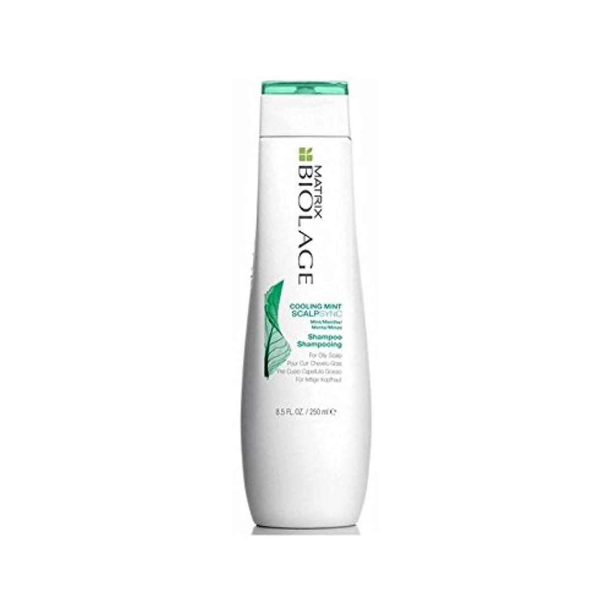 練習した食器棚化粧Matrix Biolage Scalptherapie Scalp Cooling Mint Shampoo (250ml) (Pack of 6) - ミントシャンプー(250ミリリットル)を冷却マトリックスバイオレイジ...
