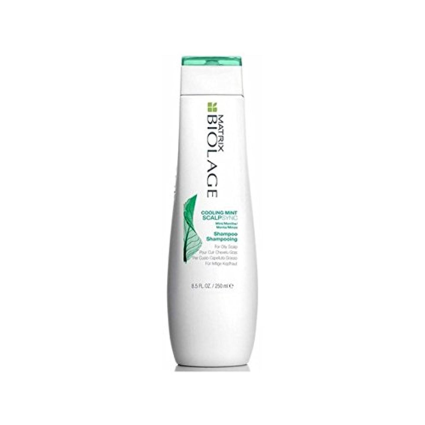 ドラゴン何クランプMatrix Biolage Scalptherapie Scalp Cooling Mint Shampoo (250ml) (Pack of 6) - ミントシャンプー(250ミリリットル)を冷却マトリックスバイオレイジ...