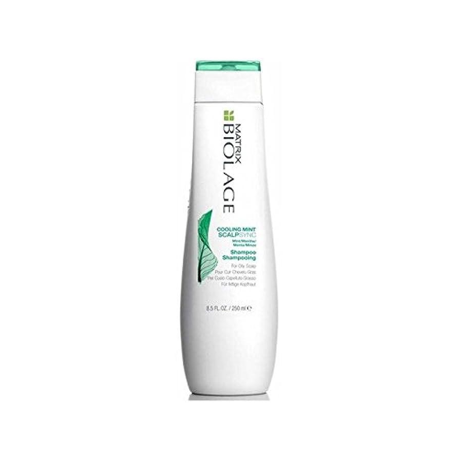倉庫バンガローシンプトンMatrix Biolage Scalptherapie Scalp Cooling Mint Shampoo (250ml) (Pack of 6) - ミントシャンプー(250ミリリットル)を冷却マトリックスバイオレイジ...