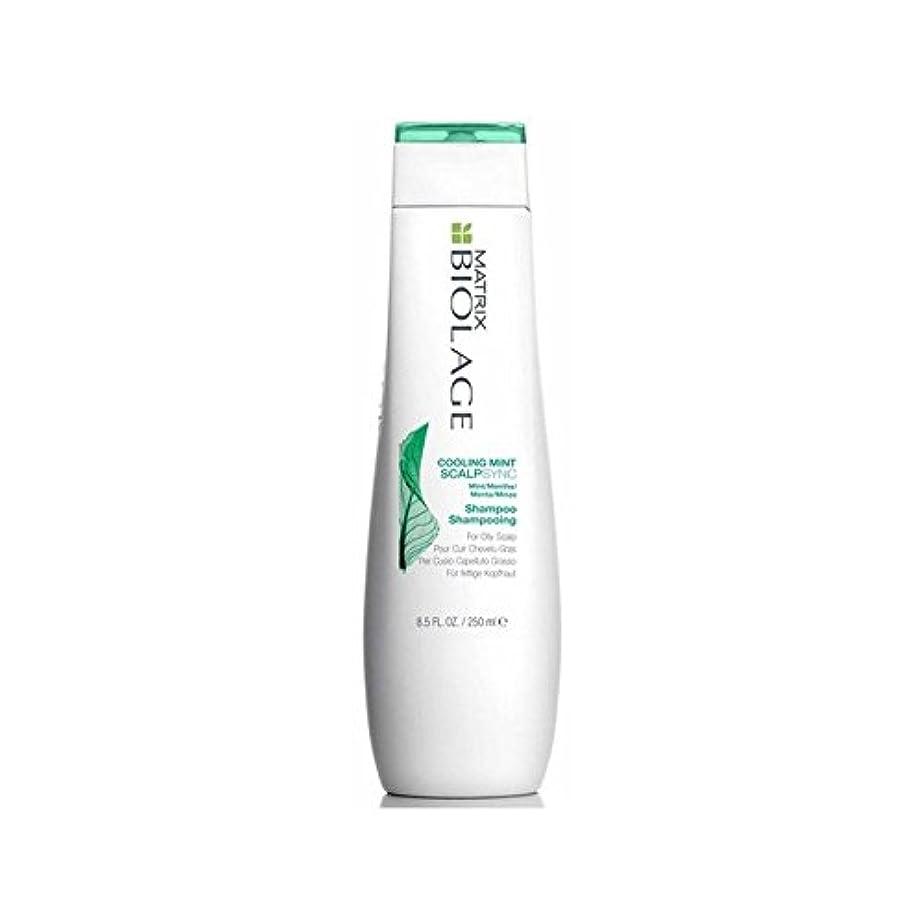 水破壊する時刻表Matrix Biolage Scalptherapie Scalp Cooling Mint Shampoo (250ml) (Pack of 6) - ミントシャンプー(250ミリリットル)を冷却マトリックスバイオレイジ...