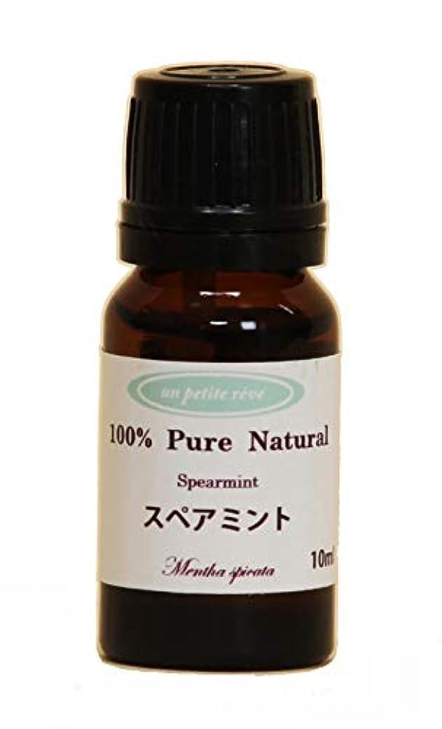 バイソンみすぼらしい最適スペアミント 10ml 100%天然アロマエッセンシャルオイル(精油)