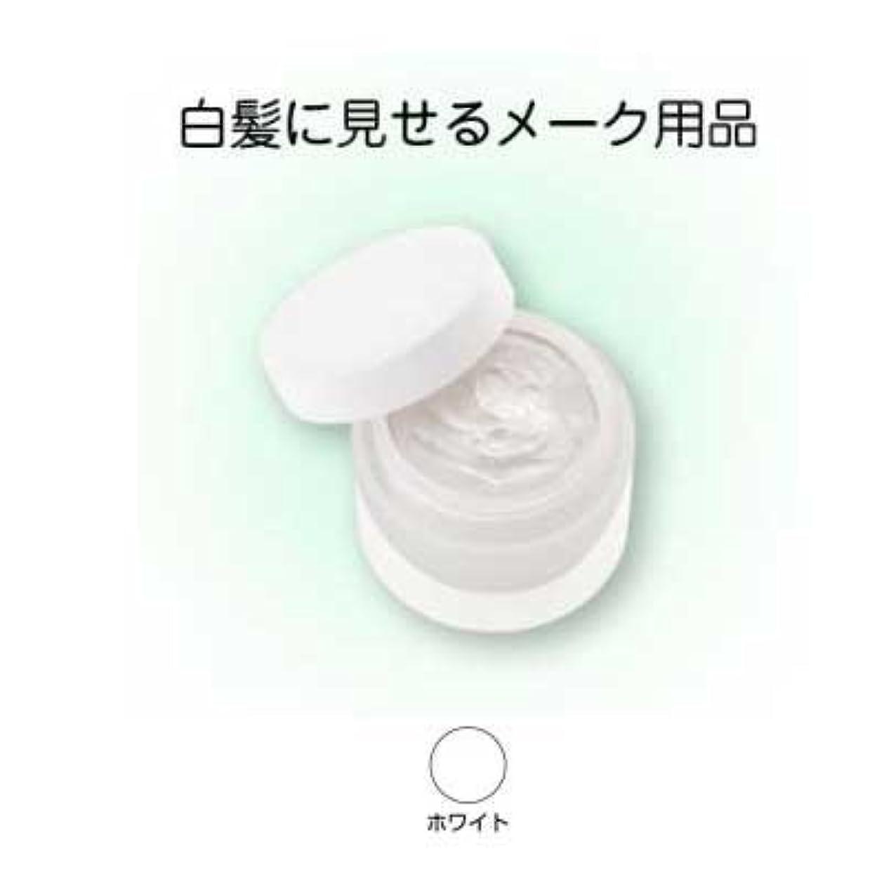 のれん名前を作るヒントヘアシルバー 33g ホワイト【三善】