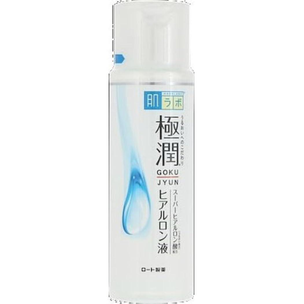 軽青写真トリッキーロート製薬 肌ラボ 極潤ヒアルロン液 170ml×48個セット