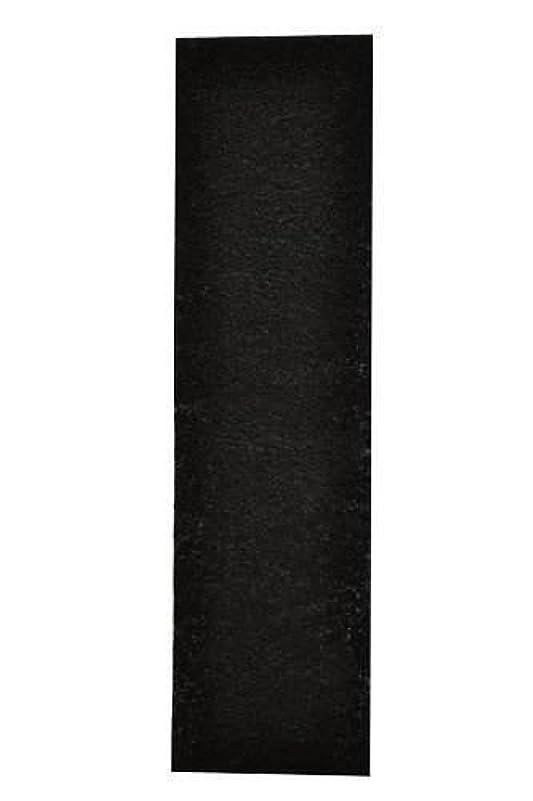 一過性可能ジャムCarbon Activated Pre-Filter 4-pack for use with the germguardian FLT5000/FLT5111 HEPA Filter for AC5000 Series, Filter C by All-Filters, Inc [並行輸入品]