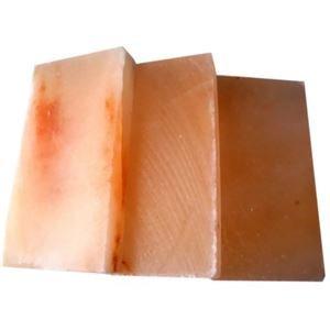 GANBAN 岩塩プレート Mサイズ 3枚セット