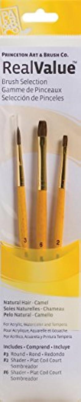 現実繁栄留まるPRINCETON(プリンストン) Brush Set-9101 3本セット
