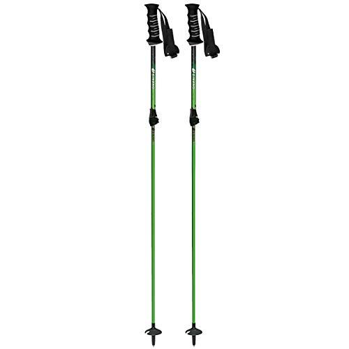 SINANO(シナノ) スキーポール 2019 フリーFAST グリーン 伸縮式 95〜120cm ファストロック搭載 18-19 シナノ ポール シナノ ストック