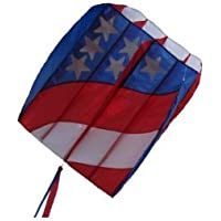 In the Breeze Patriot Wave 7.5 Air Foil Kite おもちゃ [並行輸入品]