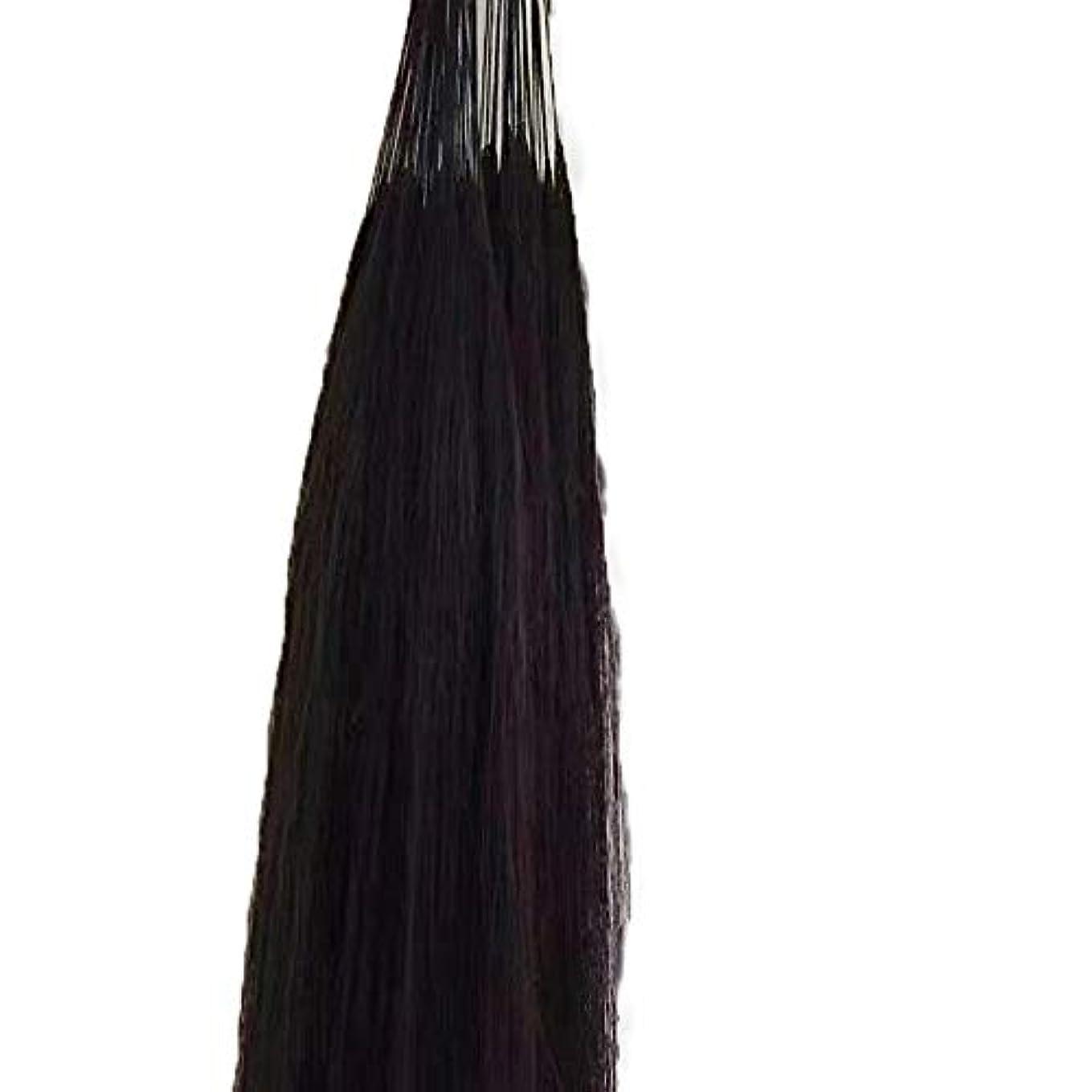 マウスピース脅迫おもちゃJULYTER 羽毛エクステンション人間の毛先のヒントフュージョンアンボー手編み未縫合ヘアーエクステンション (色 : 黒, サイズ : 60cm)