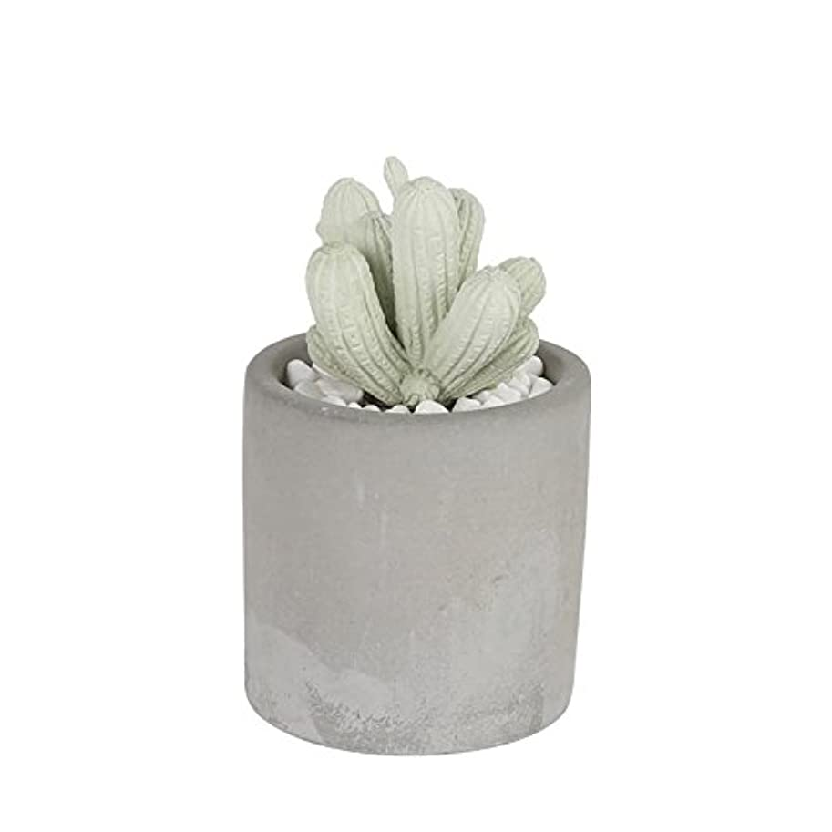 CACTUS FRAGRANCE DIFFUSER S.FLOWER