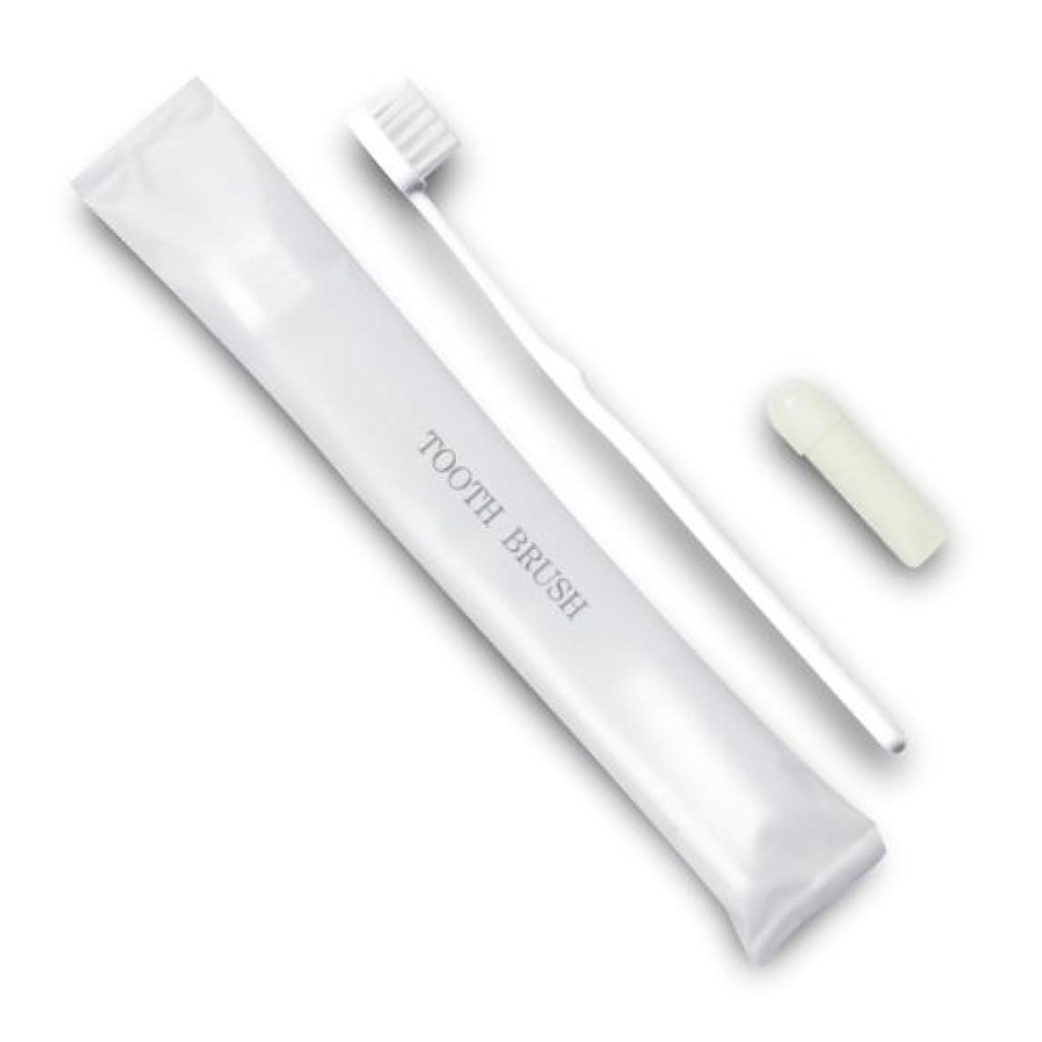 心理的に装備する追い越すホテル業務用歯ブラシ21穴(白)3gチューブ マット袋FタイプDX 10本