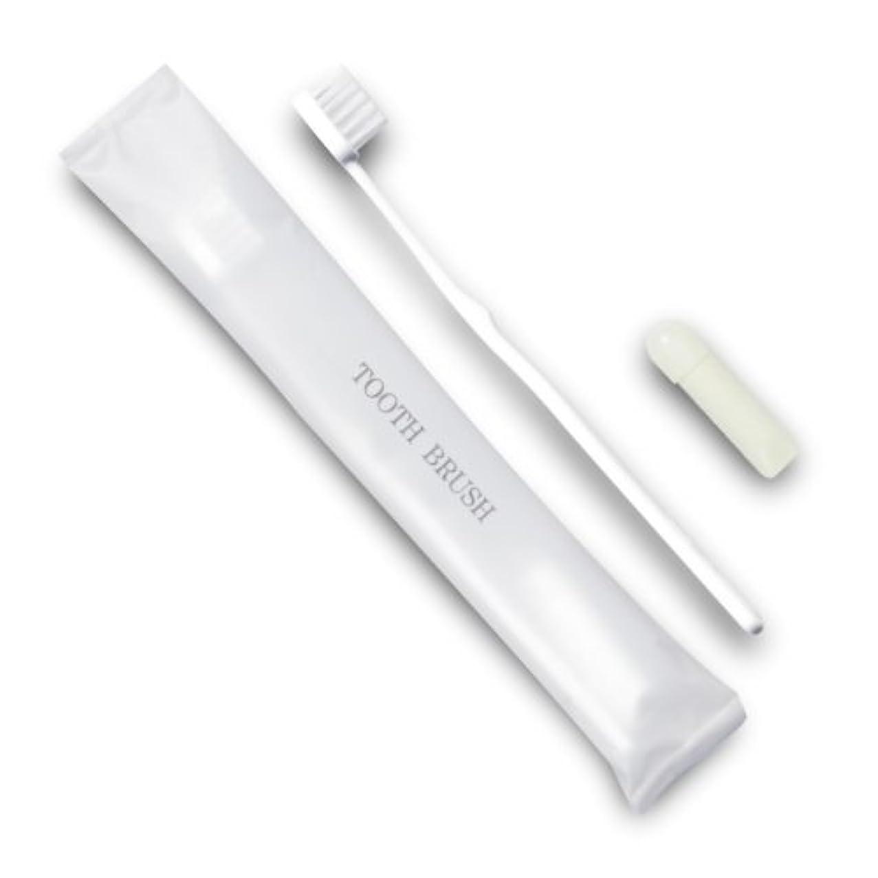 キロメートル有益明らかホテル業務用歯ブラシ21穴(白)3gチューブ マット袋FタイプDX 10本