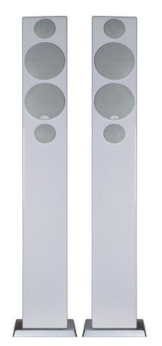 モニターオーディオ スピーカー Silver W12 [Rosenut 単品]
