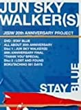JUN SKY WALKER(S) 20th ANNIVERSARY NEW&LAST DVD STAY BLUE~ALL ABOUT 20th ANNIVERSARY~ 画像