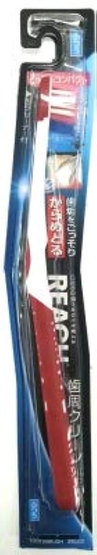 プラスチックスコットランド人ペパーミント【まとめ買い】リーチ 歯周クリーンとってもコンパクト ふつう ×3個