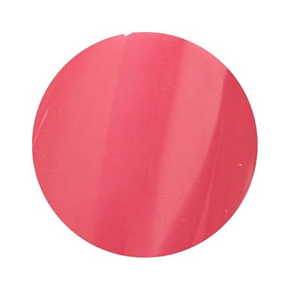 意味のある傘レザーPutiel プティール カラージェル 310 ラフレーズ 2g (TOMOMIプロデュース)