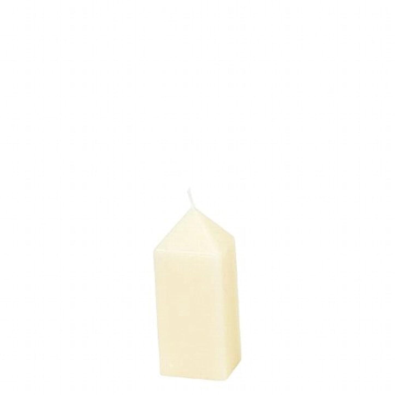 悲観的忠実便宜ヤンキーキャンドル(YANKEE CANDLE) オベリスクキャンドルS