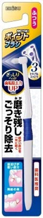 牽引スキャンダラス菊【まとめ買い】ポイントブラシぎっしりヘッド ×3個