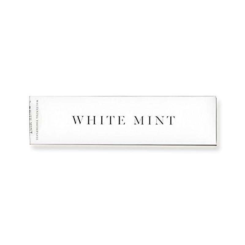 珍しいアスペクトカテナホワイトミント 130g (旧シルクホワイト)