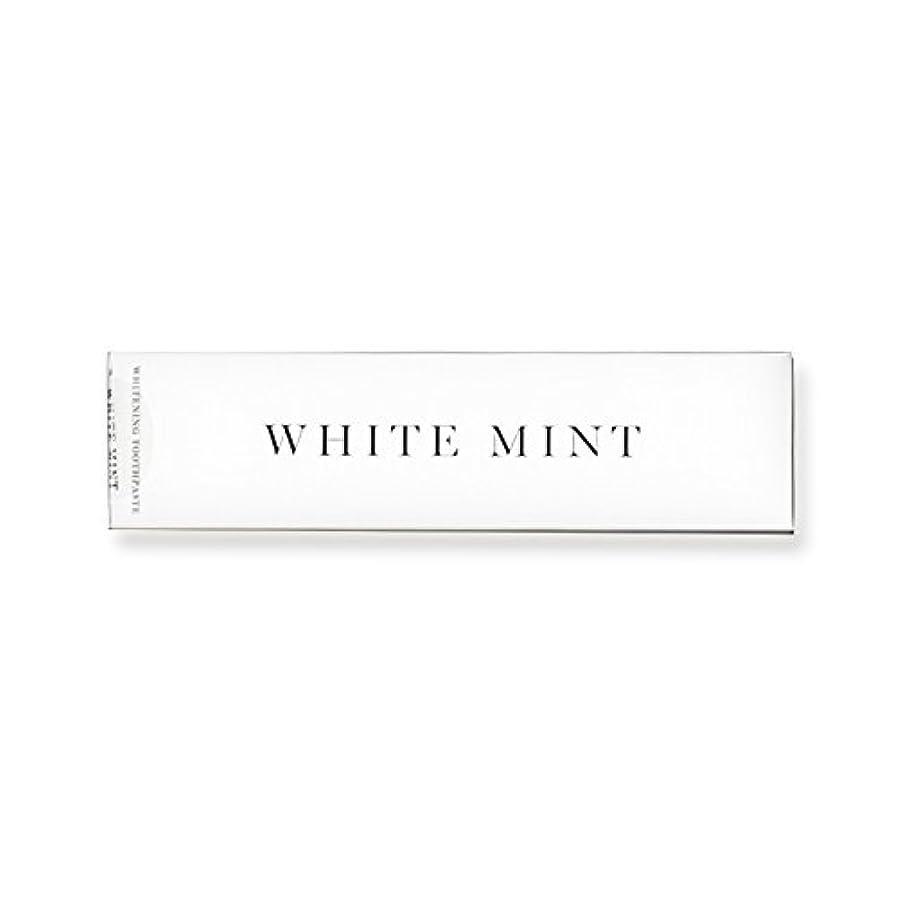 事前に熱意政権ホワイトミント 130g (旧シルクホワイト)