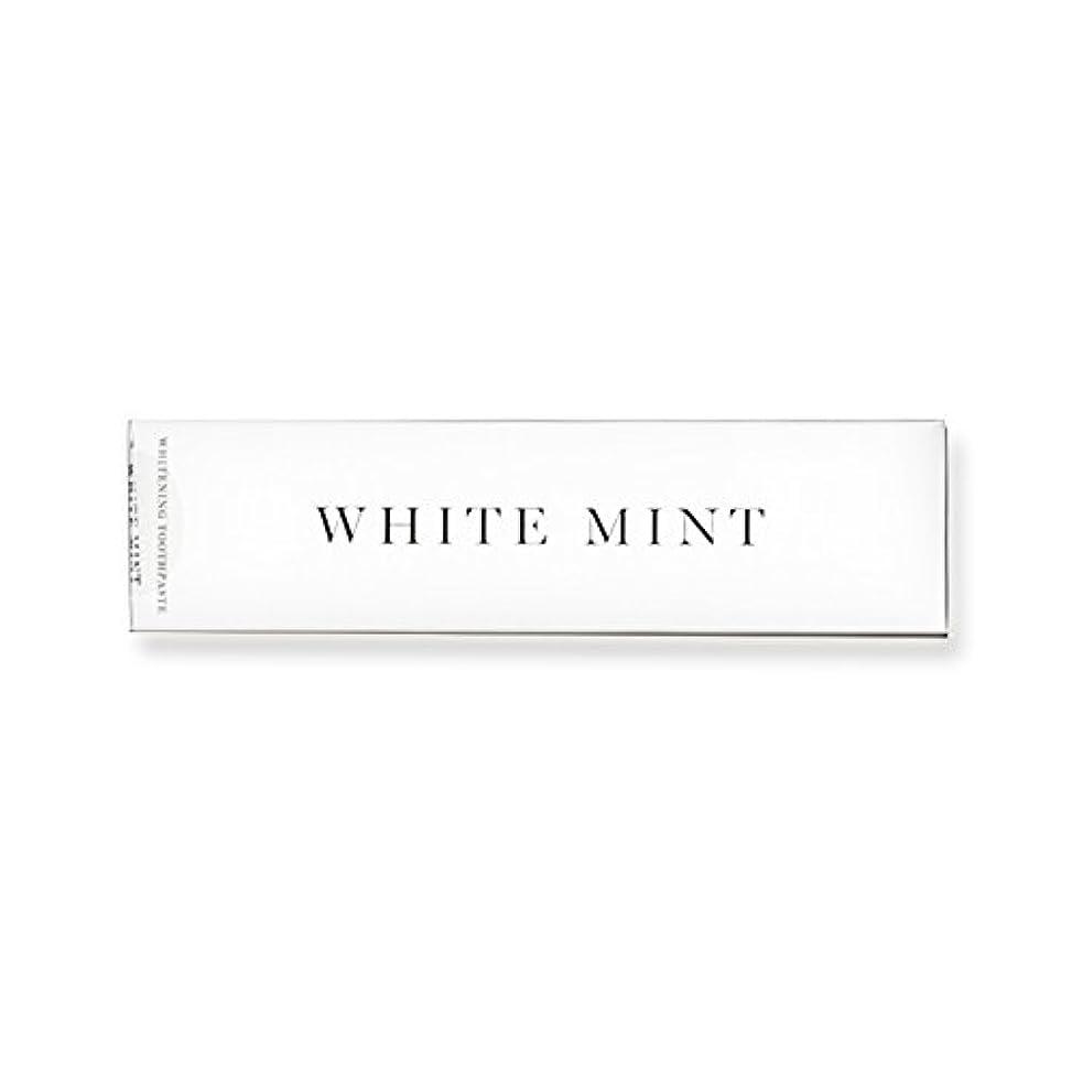 富豪スケジュールシソーラスホワイトミント 130g (旧シルクホワイト)