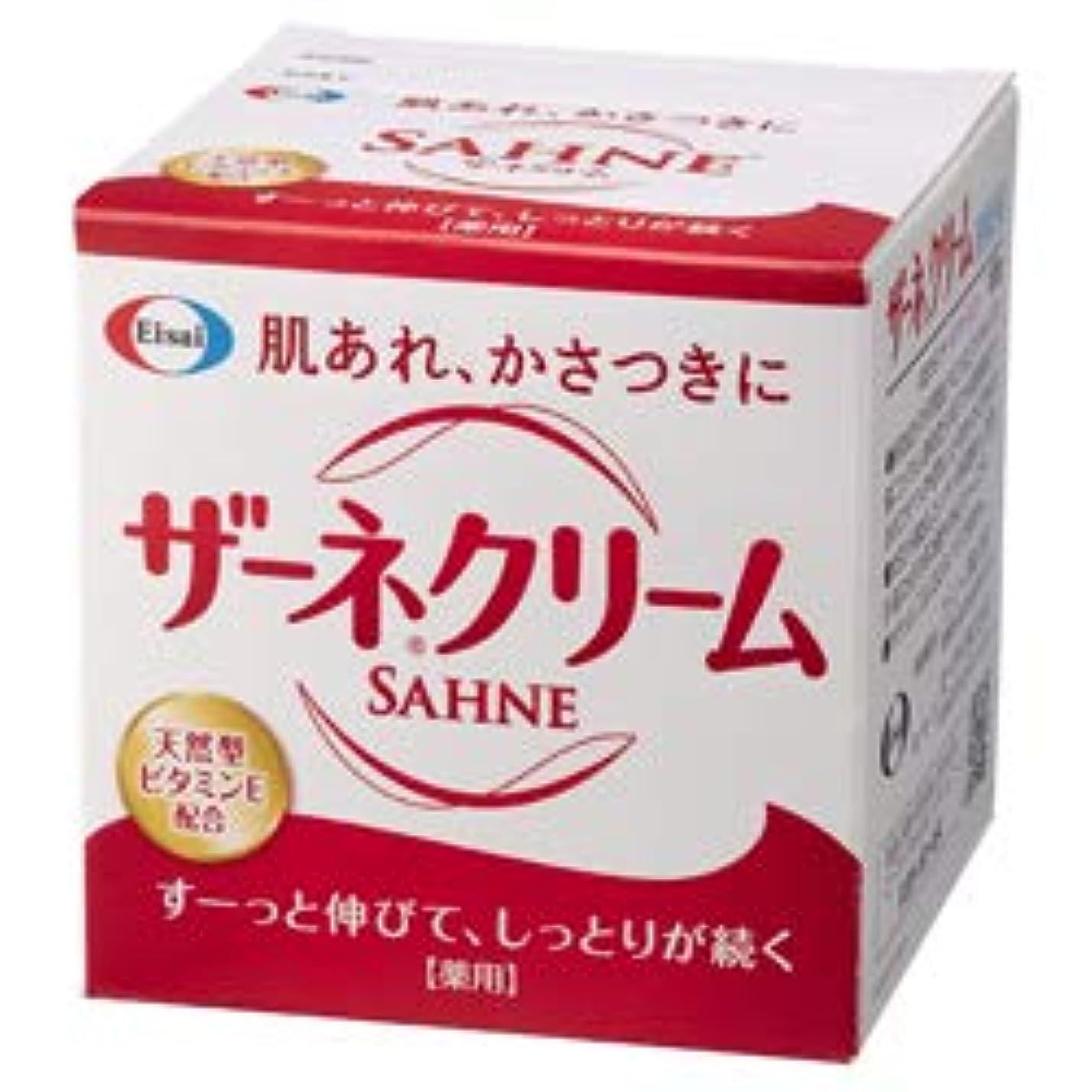 折若さ長くする【エーザイ】ザーネクリーム 100g(医薬部外品) ×4個セット