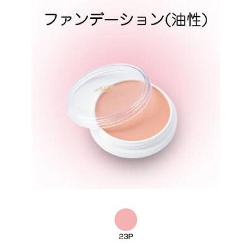 品種バルク分グリースペイント 8g 23P 【三善】ドーラン