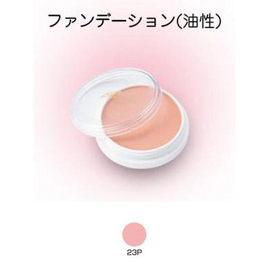略奪合計合唱団グリースペイント 8g 23P 【三善】ドーラン