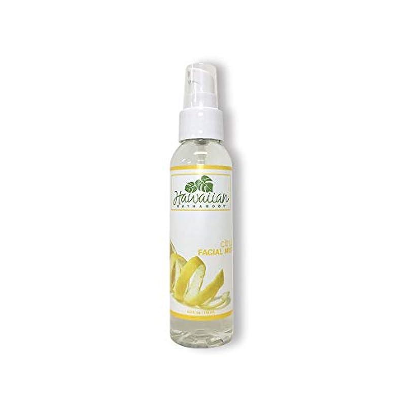 カフェテリア移動する広告するハワイアンバス&ボディ シトラス フェイシャルミスト118ml (Citrus Facial Mist 4oz)