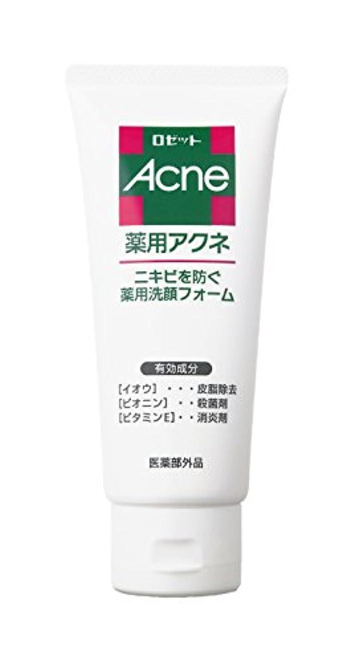 腹部亜熱帯たとえロゼット 薬用アクネ 洗顔フォーム