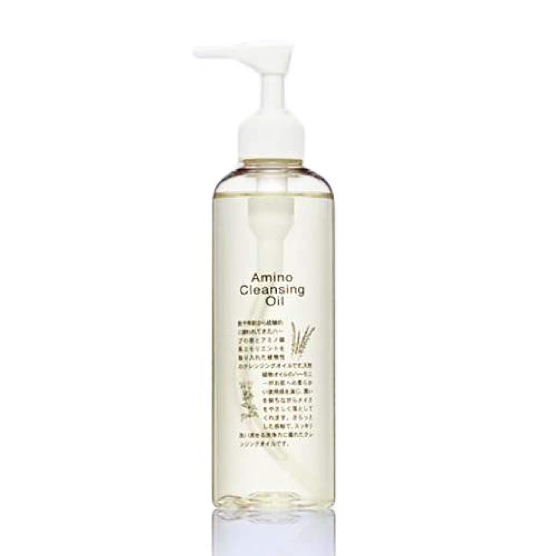 ナイトスポット不完全な浴エビス化粧品(EBiS) アミノクレンジングオイル クレンジング