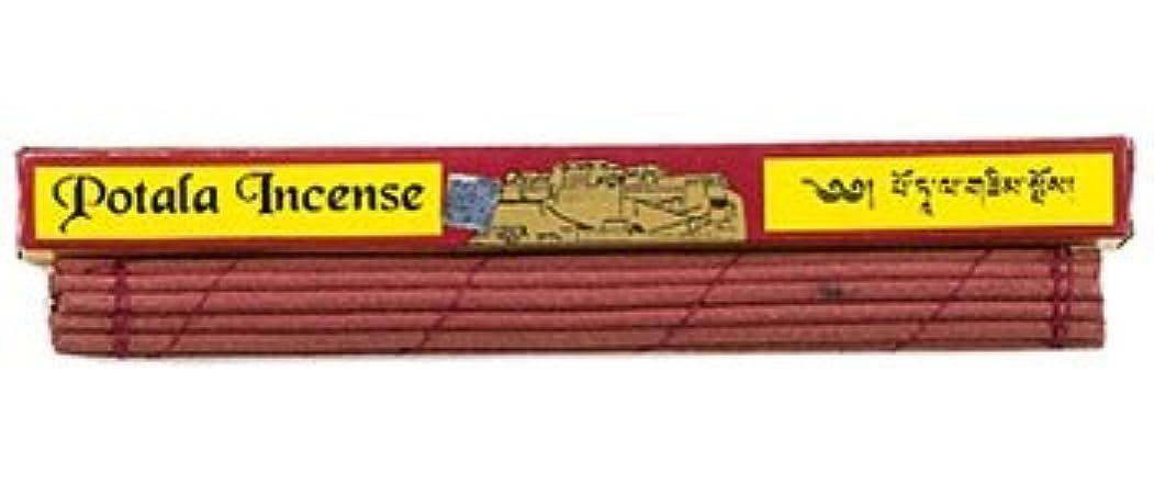 終わり物理学者夕方ポタラTibetan Incense - 25 Sticks 10