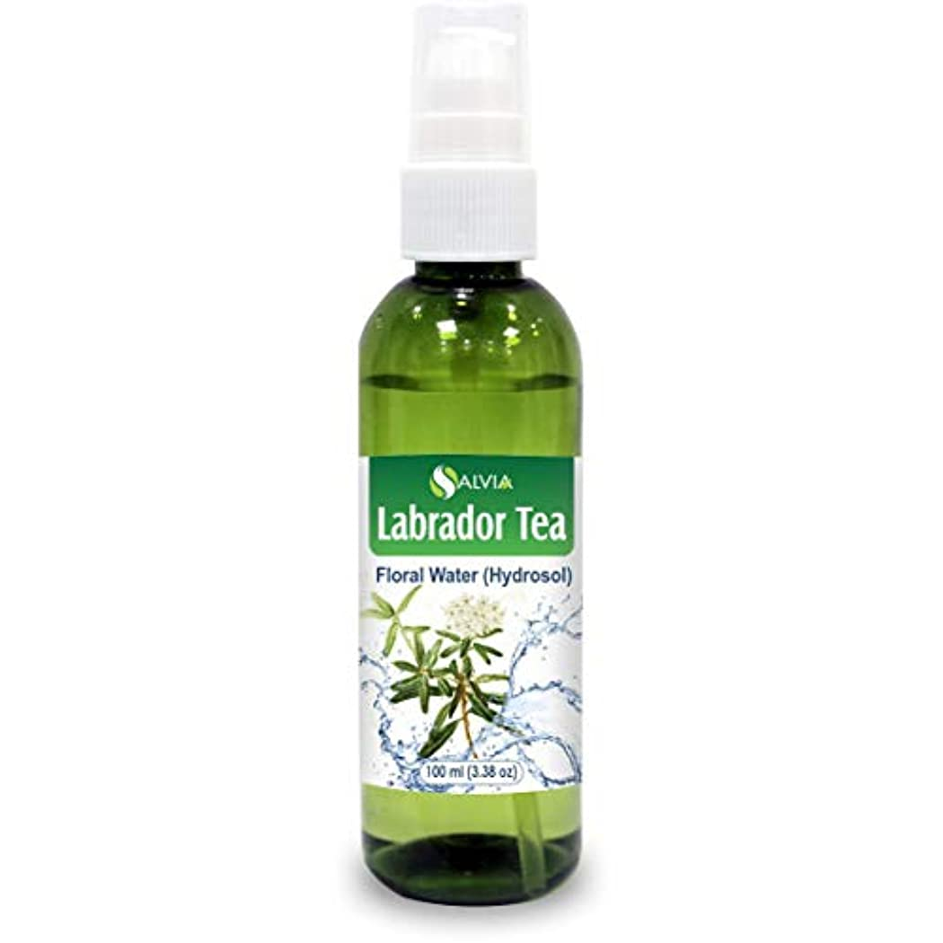 ハードウェアマーキングすり減るLabrador Tea Floral Water 100ml (Hydrosol) 100% Pure And Natural