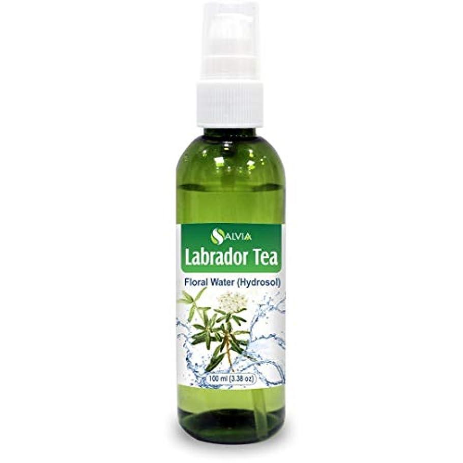検出するあごひげ連結するLabrador Tea Floral Water 100ml (Hydrosol) 100% Pure And Natural