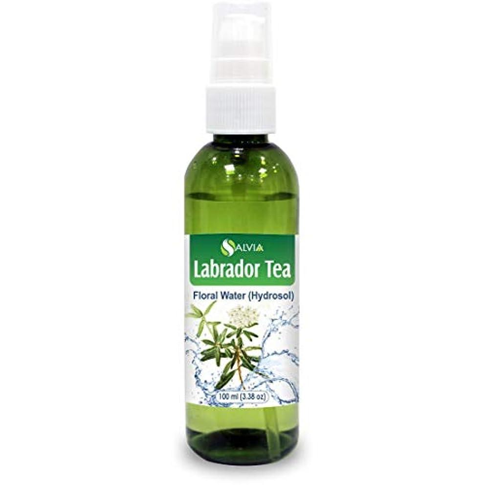 こどもセンターペナルティ失敗Labrador Tea Floral Water 100ml (Hydrosol) 100% Pure And Natural