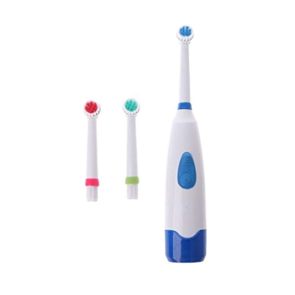 終了する倒産つぶすManyao 3ブラシヘッドで防水回転電動歯ブラシ (青)