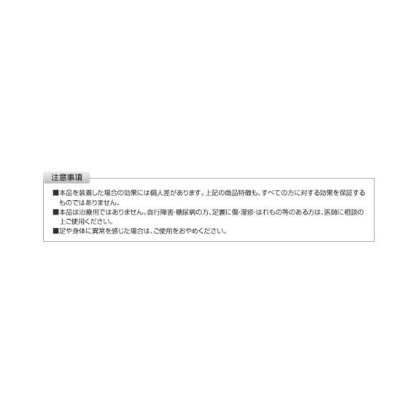 インソールプロ 足底筋膜炎対策 レディスの紹介画像6