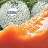北海道産 秀品 赤肉メロン1玉2.0kg前後 2玉入