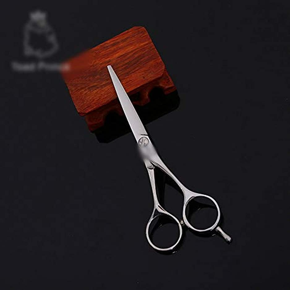 デザイナー企業弾力性のある高品質6インチ美容院プロフェッショナルフラットせん断 モデリングツール (色 : Silver)