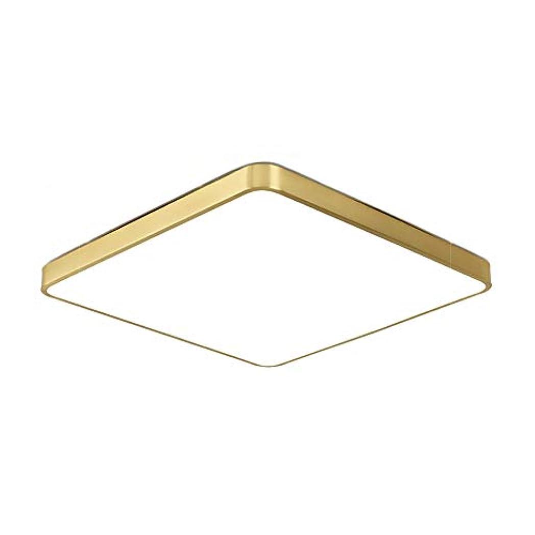 主人推測する発動機銅アクリル調光可能 天井灯,ヨーロッパの正方形のled シーリングライト,高光透過 シャンデリア リビングルーム ベッドルーム 3色調光 30x30cm(12x12inch)