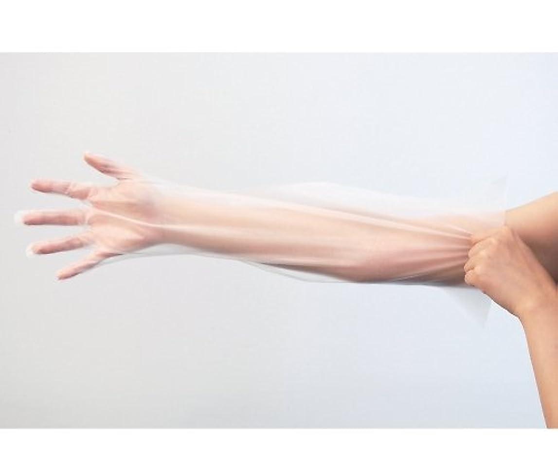 王朝葉を集めるエッセンス竹虎8-6794-02ピレンワイプロング(ポリエチレン手袋)M
