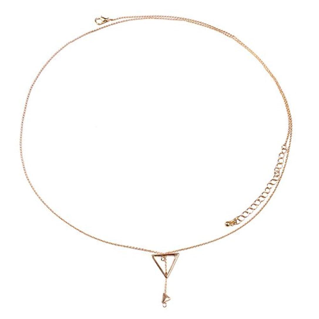 テメリティくちばしダーベビルのテス気質可愛い 銀のネックレス 幾何学三角欧米個性セーター百搭ネックレス プレゼント